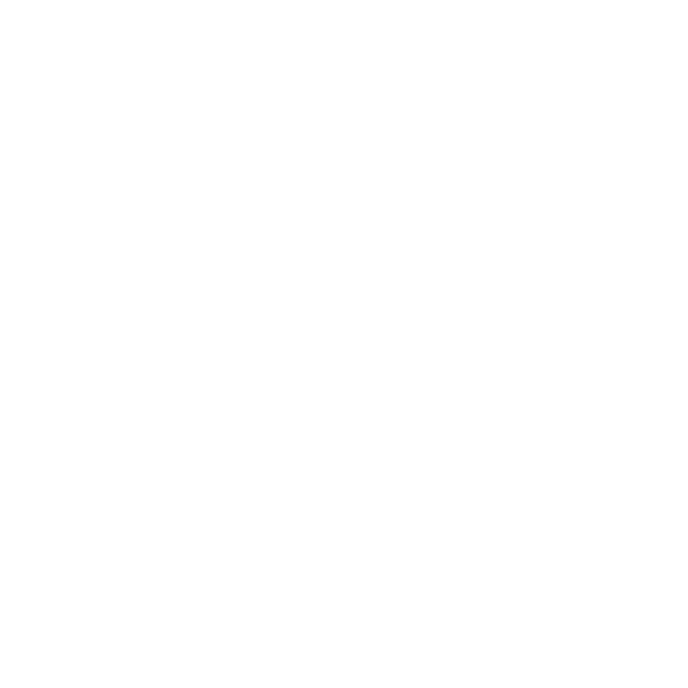12_TheBridge_WhiteLogo_TransparentBG