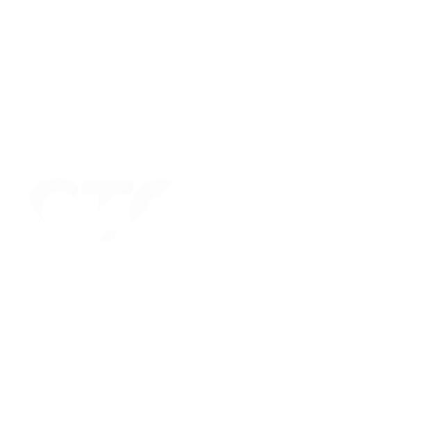 17_GTO_WhiteLogo_TransparentBG